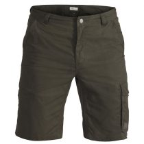 FRILUFTS RAZNAS SHORTS Men's travel trousers