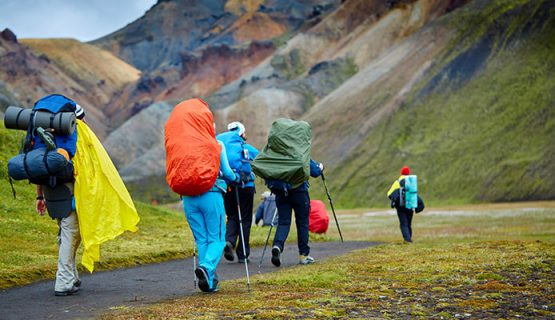 Rain Cover Backpack The North Face, Nepa, Jack Wolfskin, Berghaus…